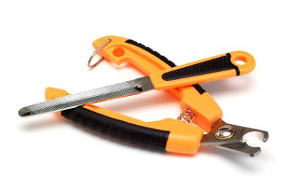 choosing the right nail clippers for your dog dog